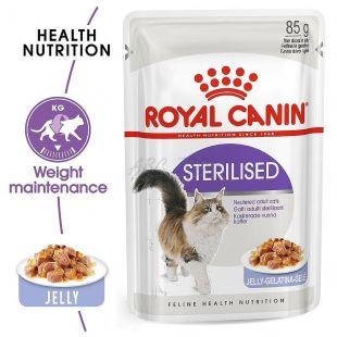 Royal Canin STERILISED in Jelly 85g - žele v vrečici