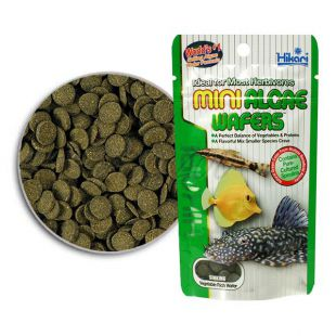 Ribja hrana Hikari Mini Algae Wafers 1 kg