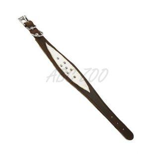 Usnjena ovratnica za italijanskega hrta - rjava, 31-35 cm