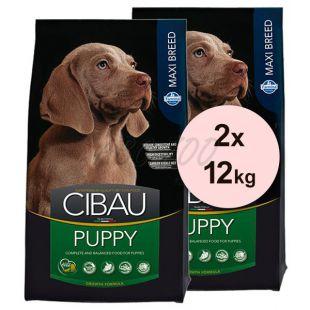 Farmina MO SP CIBAU dog PUPPY MAXI 2 x 12 kg