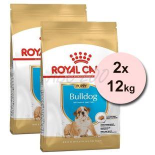 ROYAL CANIN ENGLISH BULLDOG JUNIOR – 2 x 12 kg