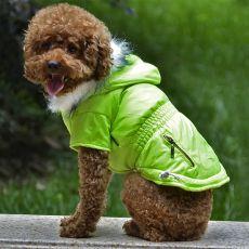Pasji plašč z okrasnim žepom - fluorescentno zelen, S