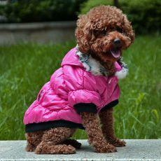 Pasji plašč s črno obrobo - roza, S