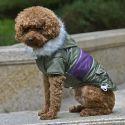 Pasji plašč z našitkom - zelen, XL