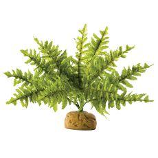 Exo Terra rastlina za terarij - bostonska praprot, majhna, 20cm