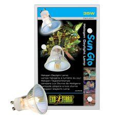 Žarnica Exo Terra Halogen Daylight Lamp 35W