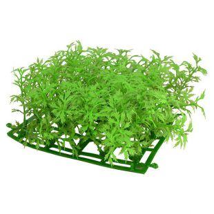 Plastična rastlina za akvarij CP03-15P - 15 x 15 cm