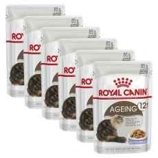 Royal Canin AGEING + 12 - vrečica 6 x 85g