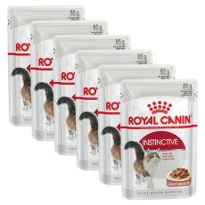 Royal Canin INSTINCTIVE 6 x 85 g - vrečica