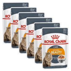 Royal Canin Intense BEAUTY in Jelly 6 x 85g - žele v vrečici