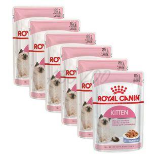 Royal Canin KITTEN Instinctive in Jelly 6 x 85 g - koščki v želeju