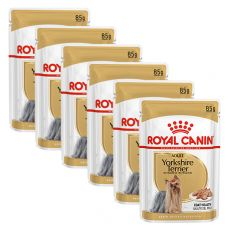 ROYAL CANIN ADULT YORKSHIRE 6 x 85 g
