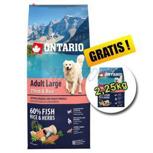 ONTARIO Adult Large 7 Fish & Rice 12 kg + 2,25 kg BREZPLAČNO