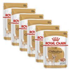 ROYAL CANIN ADULT ČIVAVA 6 x 85 g - vrečka