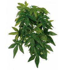 Terarijska rastlina oslezovec - viseča, 20 x 50 cm