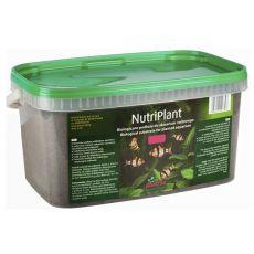 NutriPlant substrat za akvarijske rastline, 3 L