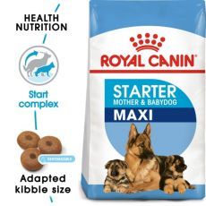 ROYAL CANIN MAXI STARTER MOTHER AND BABY DOG – 15 kg