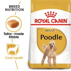 ROYAL CANIN ADULT POODLE 1,5 kg