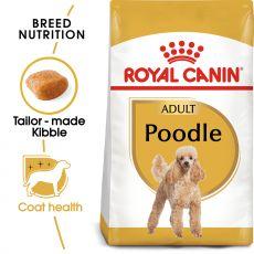 ROYAL CANIN ADULT POODLE 1,5 kg