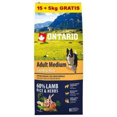 ONTARIO Adult Medium Lamb & Rice 15+5kg GRATIS
