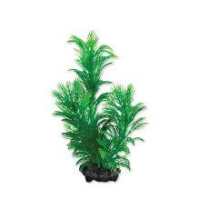 Tetra akvarijska rastlina - Green Cabomba S, 15 cm