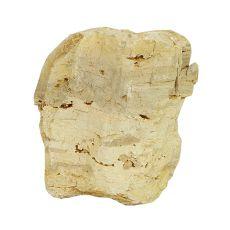 Akvarijski kamen Petrified Stone M 13 x 9 x 15 cm