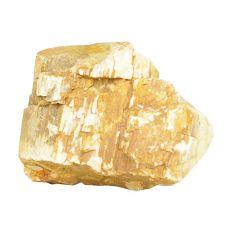 Akvarijski kamen Petrified Stone M 11 x 8,5 x 9 cm
