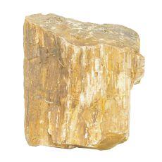 Akvarijski kamen Petrified Stone M 11 x 12 x 13 cm