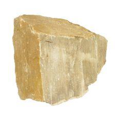 Akvarijski kamen Petrified Stone M 12 x 11 x 10 cm