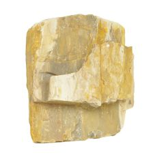 Akvarijski kamen Petrified Stone M 13 x 7 x 12 cm