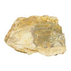 Akvarijski kamen Petrified Stone M 21 x 7 x 13 cm