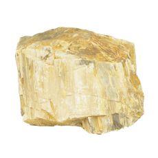 Akvarijski kamen Petrified Stone M 16 x 13 x 12 cm