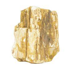 Akvarijski kamen Petrified Stone M 9 x 6 x 11 cm