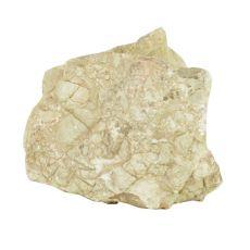 Akvarijski kamen Grey Luohan Stone M 16 x 8 x 16 cm