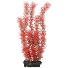 Myriophyllum Heterophyllum (Red Foxtail) - rastlina Tetra 30 cm, M