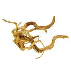 Korenina za akvarij Cuckoo Root - 64 x 30 x 37 cm