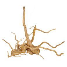 Korenina za akvarij Cuckoo Root - 48 x 20 x 45 cm