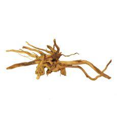 Korenina za akvarij Cuckoo Root - 50 x 28 x 15 cm