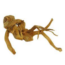 Korenina za akvarij Cuckoo Root - 41 x 57 x 27 cm