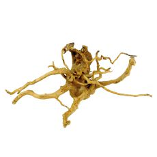 Korenina za akvarij Cuckoo Root - 53 x 34 x 25 cm
