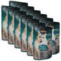 Vrečka hrane Leonardo ribe in rakci, 12 x 85 g