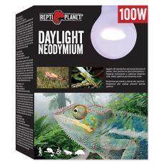 Sijalka REPTI PLANET Daylight Neodymium 100W