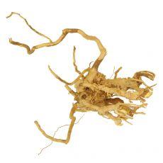 Korenina za akvarij Cuckoo Root - 19 x 11 x 14 cm