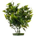 Plastična rastlina za akvarij - listi v obliki srca, 28 cm