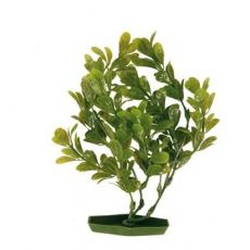 Rastlina za akvarij - plastična, 17 cm zeleno listje