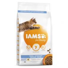 Iams Cat Dental Chicken 10 kg