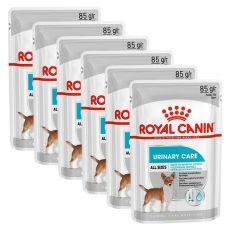 Royal Canin Dermacomfort Dog Loaf vrečka s pašteto za pse s težavami z ledvicami 6 x 85 g
