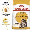 ROYAL CANIN Maine Coon Adult briketi za mačke Maine Coon 10 kg