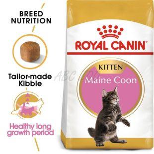 ROYAL CANIN Maine Coon Kitten briketi za mladiče Maine Coon 10 kg