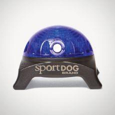 Lučka za ovratnico SportDog Beacon, modra